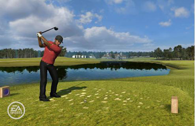 Tiger Woods Video Game